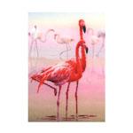 Tikkimiskomplekt Flamingod / Riolis (Venemaa)  PT-0012