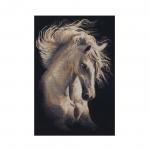Tikkimiskomplekt 1451 Valge hobune firmalt Riolis