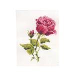 Tikkimiskomplekt Roosa roos HB-111 firmalt Riolis